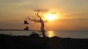 Νησί της Chrissi - Ελλάδα Στοκ φωτογραφίες με δικαίωμα ελεύθερης χρήσης