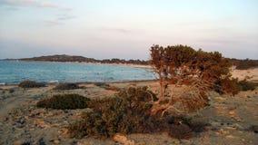 Νησί της Chrissi - Ελλάδα Στοκ Εικόνες