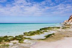 Νησί τοπίων θάλασσας Socotra Στοκ Φωτογραφίες