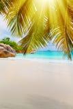 νησί τροπικό Οι Σεϋχέλλες Στοκ εικόνες με δικαίωμα ελεύθερης χρήσης