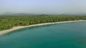 Νησί φοινικών τοπίων Καραϊβικό θάλασσας υπόβαθρο παραλιών άμμου φοινίκων δασικό άσπρο φιλμ μικρού μήκους