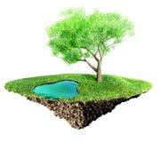Νησί χλόης απεικόνιση αποθεμάτων