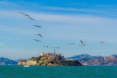 Νησί Alcatraz Στοκ φωτογραφία με δικαίωμα ελεύθερης χρήσης