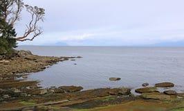 Νησί Arbutus Gabriola Στοκ φωτογραφία με δικαίωμα ελεύθερης χρήσης