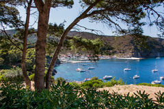 Νησί Capraia, εθνικό πάρκο Arcipelago Toscano, Τοσκάνη, Ιταλία Στοκ Φωτογραφία