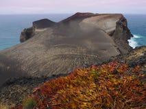 Νησί Faial στις Αζόρες, Πορτογαλία Στοκ εικόνες με δικαίωμα ελεύθερης χρήσης