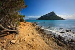 Νησί Figarolo, Σαρδηνία Στοκ Φωτογραφίες