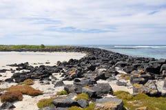 Νησί Griffiths στη νεράιδα λιμένων, Αυστραλία στοκ φωτογραφία με δικαίωμα ελεύθερης χρήσης