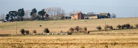 ΝΗΣΊ HARTY, KENT/UK - 17 ΙΑΝΟΥΑΡΊΟΥ: Άποψη ενός αγροκτήματος σε Harty Isl Στοκ φωτογραφίες με δικαίωμα ελεύθερης χρήσης
