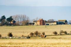 ΝΗΣΊ HARTY, KENT/UK - 17 ΙΑΝΟΥΑΡΊΟΥ: Η άποψη ενός αγροκτήματος σε Harty είναι Στοκ Φωτογραφία
