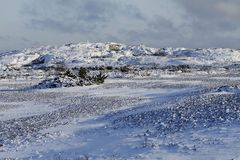 Νησί Jurmo που καλύπτεται στο χιόνι Εθνικό πάρκο αρχιπελαγών στη Φινλανδία Στοκ Εικόνα