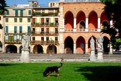 Νησί Memmia σκυλιών στο della Valle Prato στην Πάδοβα στο Βένετο (Ιταλία) στοκ φωτογραφία με δικαίωμα ελεύθερης χρήσης
