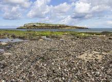 Νησί Moelfre Στοκ εικόνα με δικαίωμα ελεύθερης χρήσης