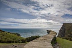 Νησί ` Muelle de las Almas ` Chiloe στοκ εικόνες