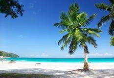 Νησί Praslin παραλιών του Λάτσιο Anse Στοκ φωτογραφία με δικαίωμα ελεύθερης χρήσης