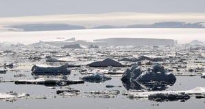 νησί Ross της Ανταρκτικής Στοκ Εικόνες
