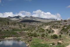 Νησί Socotra Στοκ Εικόνες