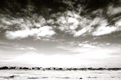 Νησί Sullivans, νότια Καρολίνα στοκ φωτογραφία με δικαίωμα ελεύθερης χρήσης