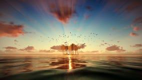 Νησί Trpical που απομονώνεται από το νερό, seagulls που πετά στην ανατολή