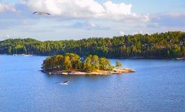 Νησιά στο αρχιπέλαγος της Στοκχόλμης Στοκ φωτογραφία με δικαίωμα ελεύθερης χρήσης