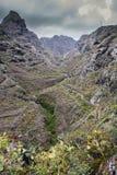 Νησιά των Κανάριων Νήσων φυσικό πάρκο του anaga στοκ εικόνα με δικαίωμα ελεύθερης χρήσης