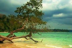 Νησιά Andaman Στοκ εικόνα με δικαίωμα ελεύθερης χρήσης