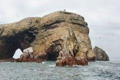 Νησιά Ballestas στο Περού Στοκ Φωτογραφία