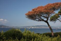 νησιά lerins Στοκ εικόνα με δικαίωμα ελεύθερης χρήσης