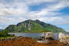 Νησιά Lofoten το καλοκαίρι Στοκ Φωτογραφία