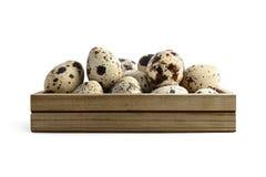 νησοπέρδικες αυγών κιβωτίων Στοκ εικόνες με δικαίωμα ελεύθερης χρήσης