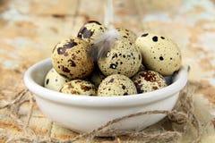 νησοπέρδικες αυγών κύπε&lambda Στοκ φωτογραφία με δικαίωμα ελεύθερης χρήσης