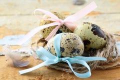 νησοπέρδικες αυγών Πάσχας Στοκ Εικόνες