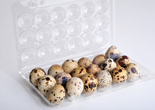νησοπέρδικες αυγών Στοκ φωτογραφίες με δικαίωμα ελεύθερης χρήσης