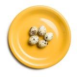 νησοπέρδικες πιάτων αυγών  Στοκ εικόνες με δικαίωμα ελεύθερης χρήσης