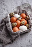 νησοπέρδικες αυγών κοτόπουλου Στοκ Εικόνες