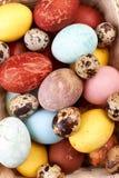 νησοπέρδικες αυγών κοτόπ&o Στοκ φωτογραφία με δικαίωμα ελεύθερης χρήσης