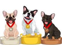 Νικητές του ανταγωνισμού σκυλιών Στοκ εικόνα με δικαίωμα ελεύθερης χρήσης