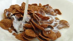 Νιφάδες δημητριακών ενάντια στις άσπρες μύγες γάλακτος υποβάθρου φιλμ μικρού μήκους