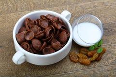 Νιφάδες καλαμποκιού Choco στοκ εικόνες