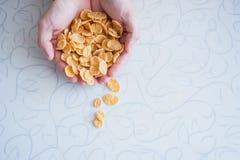 Νιφάδες γλυκού καλαμποκιού για το πρόγευμα Στοκ Εικόνες