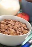 Νιφάδες καλαμποκιού σοκολάτας Στοκ φωτογραφίες με δικαίωμα ελεύθερης χρήσης