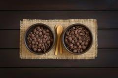 Νιφάδες καλαμποκιού σοκολάτας Στοκ φωτογραφία με δικαίωμα ελεύθερης χρήσης
