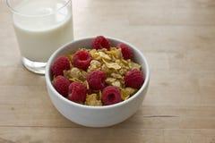 Νιφάδες & μούρα με το γάλα Στοκ Φωτογραφίες