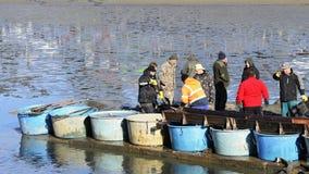 11 Νοεμβρίου 2017 Δημοκρατία της Τσεχίας του Μπρνο Παραδοσιακή σύλληψη φθινοπώρου των λιμνών Τσεχική παράδοση προ-Χριστουγέννων Στοκ φωτογραφίες με δικαίωμα ελεύθερης χρήσης