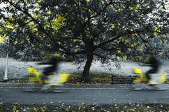 Νοικιάστε ένα ποδήλατο Στοκ Φωτογραφίες