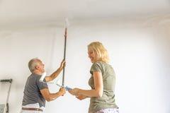 Νοικοκυρά και ζωγράφος Στοκ εικόνες με δικαίωμα ελεύθερης χρήσης