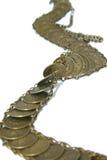 νομίσματα ζωνών Στοκ Εικόνα
