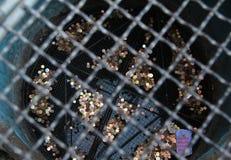 Νομίσματα κάτω από το δικτυωτό πλέγμα Στοκ φωτογραφίες με δικαίωμα ελεύθερης χρήσης