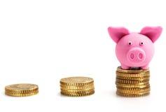 Νομίσματα και λίγος ρόδινος χοίρος στα νομίσματα. Απομονωμένος στο λευκό Στοκ Εικόνες