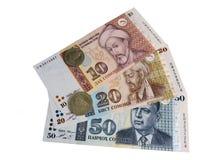 Νομίσματα και τραπεζογραμμάτια του Τατζικιστάν στοκ φωτογραφία με δικαίωμα ελεύθερης χρήσης